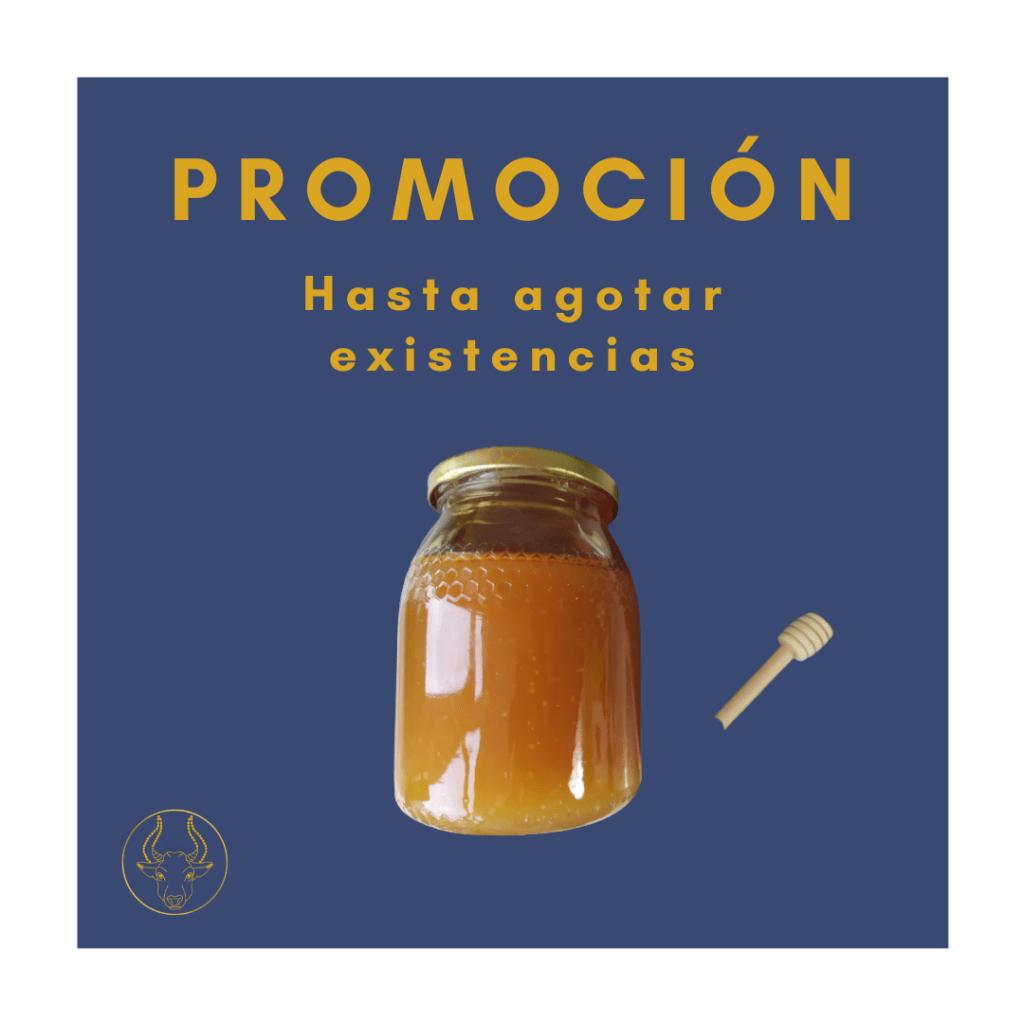 miel de alimentación Gallega